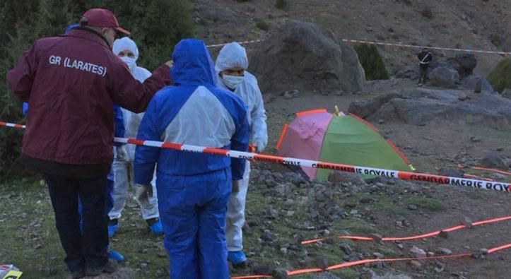 Affaire du meurtre de deux touristes scandinaves