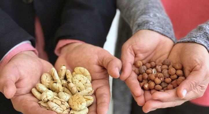 Les prix mondiaux des produits  alimentaires restent stables en juin