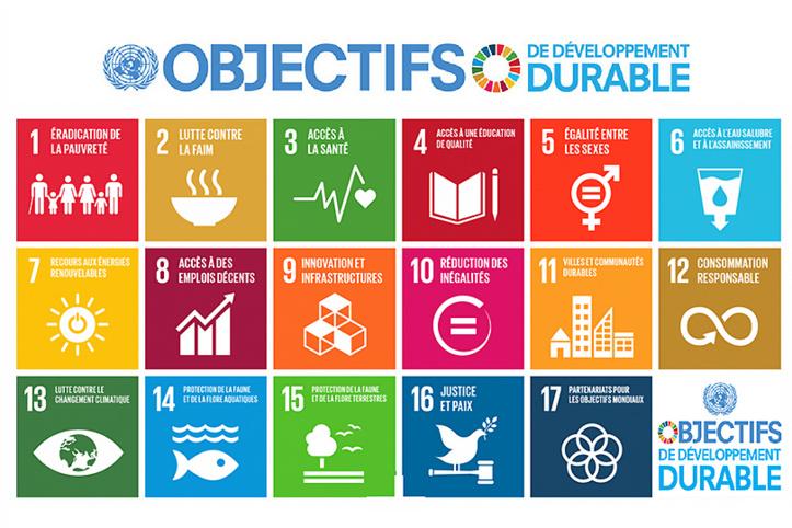 Appel à prioriser les objectifs  de développement en Afrique