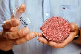 La viande de laboratoire en réponse à une demande mondiale croissante