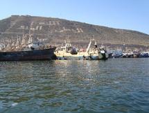 Une réunion se termine en queue de poisson à Agadir : Ces lobbies que la restructuration du secteur de la pêche dérange