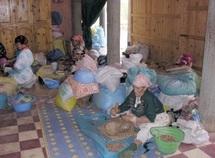Economie sociale : 1.250 coopératives ont vu le jour en 2011