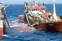Manifestation à Cadiz pour la reconduction de l'accord de pêche Maroc-UE : Les filets de la discorde