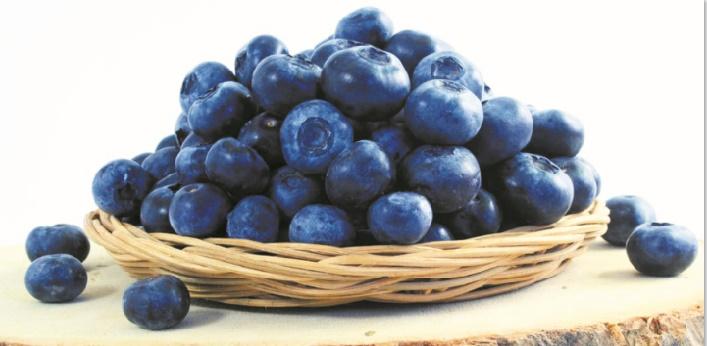 Myrtilles : Cet aliment miracle réduit le risque d'Alzheimer et d'infarctus