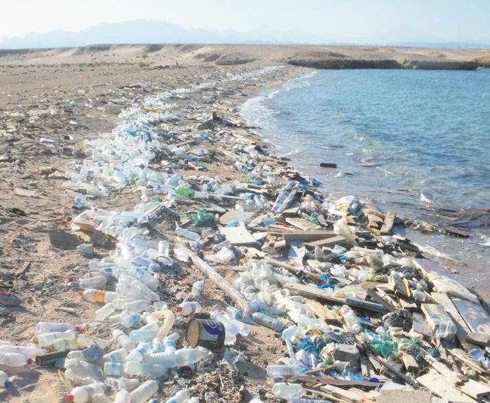 Le droit de l'environnement en est à ses premiers balbutiements