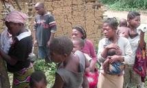 Congo : la question pygmée