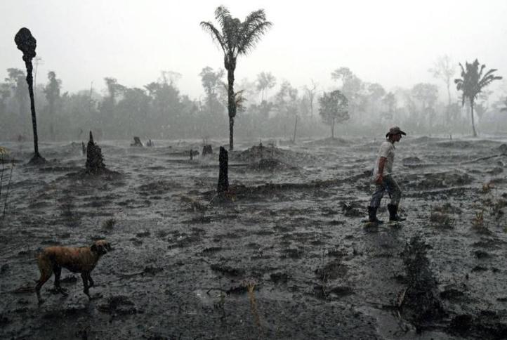 Le Brésil snobe l'aide du G7 et dit que les feux en Amazonie sont sous contrôle