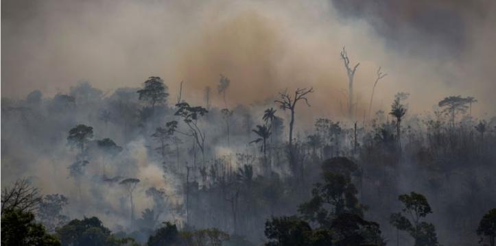 En réaction à la politique environnementale de Brasilia