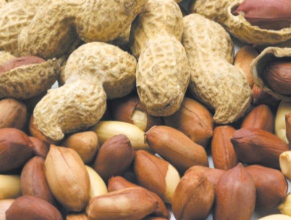 Les cacahuètes sont-elles bonnes pour la santé ?