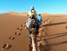 Avec une baisse de 21% de la demande : Les touristes français boudent le Maroc