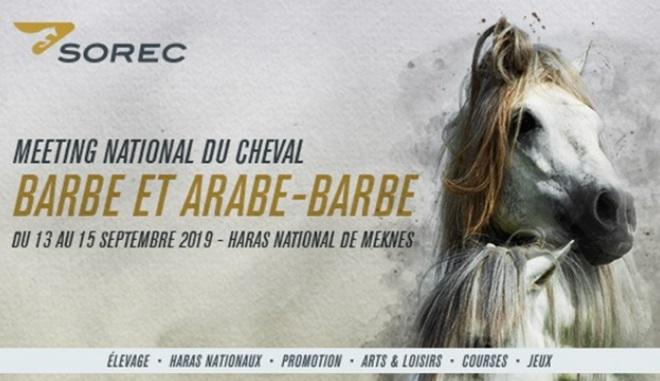 Meknès abrite le 3ème meeting national du cheval barbe et arabe-barbe