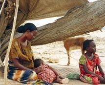 Le PIB de certains pays aurait enregistré un taux moyen de 6,1%, mais le recul de pauvreté n'a pas été au rendez-vous : Quelle croissance faut-il pour sortir l'Afrique de la pauvreté ?