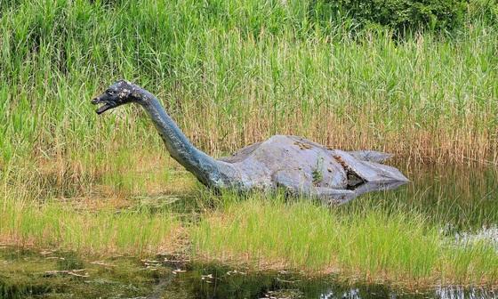 Et si le monstre du Loch Ness était une anguille ?