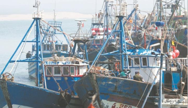 La pêche maritime à Al Hoceima, un levier important pour le développement de l'économie locale