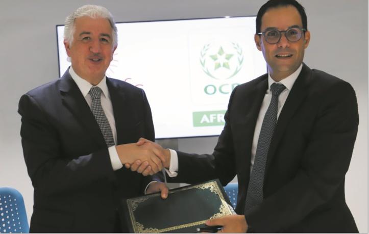 OCP Africa et  ITFC s'allient pour renforcer les capacités agricoles en Afrique