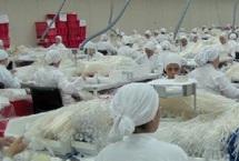 Parc industriel de Settat : Un levier pour l'emploi dans la région de Chaouia-Ouardigha