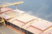 Entre début mars et fin mai 2012 : Le Maroc importera plus de 10 Mqx de blé tendre exonérés de droits