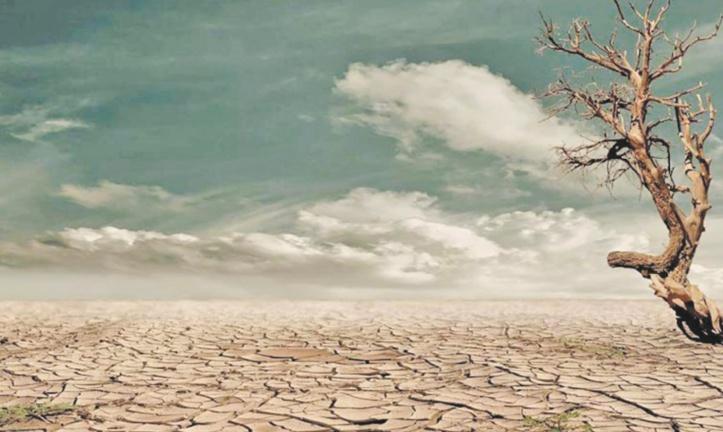 Dix scientifiques marocains s'associent à un appel mondial mettant en garde contre l' urgence climatique