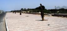Des acteurs associatifs et des jeunes se mobilisent pour le nettoyage de la ceinture verte d'Essaouira