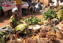 L'Afrique aime protéger sa pauvreté