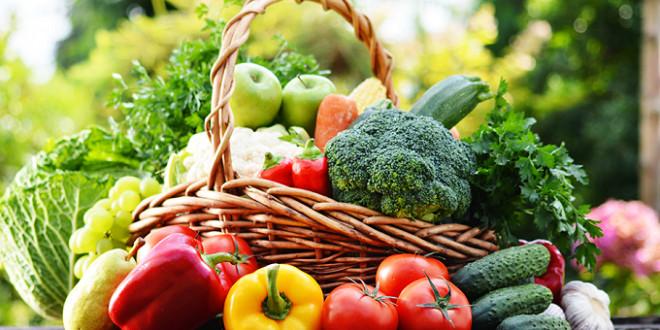 La superficie consacrée à l'agriculture bio au Maroc a atteint 11.000 ha