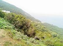 Tanger : Abandon de l'opération de révision du plan d'aménagement de Jbel Kébir
