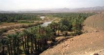 Tourisme durable à Zagora : Le potentiel oasien au cœur du débat