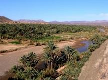 Dans les vallées de Draâ et Maidr, le secteur nuit à la biodiversité : Le tourisme coûte plus qu'il ne rapporte