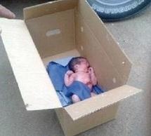 Un nourrisson abandonné au fond d'une décharge