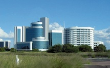 Botswana : un modèle pour sortir de l'économie de rente ?