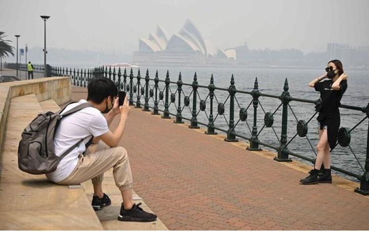 Sydney face à une urgence sanitaire
