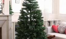 Insolite : Arbre de Noël