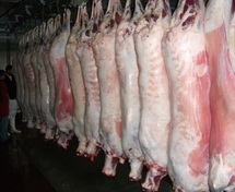 Les chevillards casablancais sortent les couteaux : La gestion des abattoirs mise à l'index