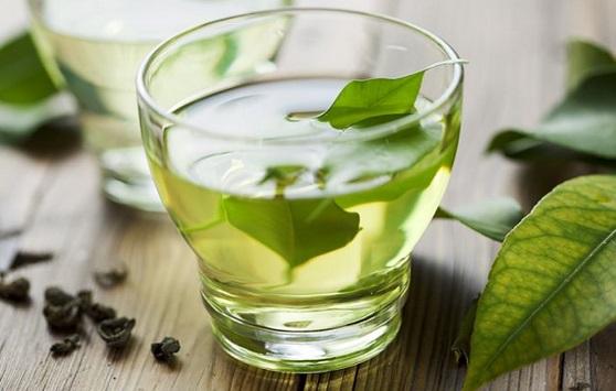 Le thé vert aide-t-il à vivre plus longtemps ?