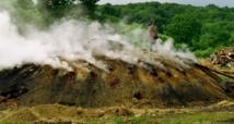 Reportage : Guerre sans merci entre prédateurs et super-prédateurs