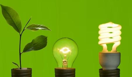 """Lancement de l'appel à candidature pour le """"Green Business Incubator"""" 2020"""