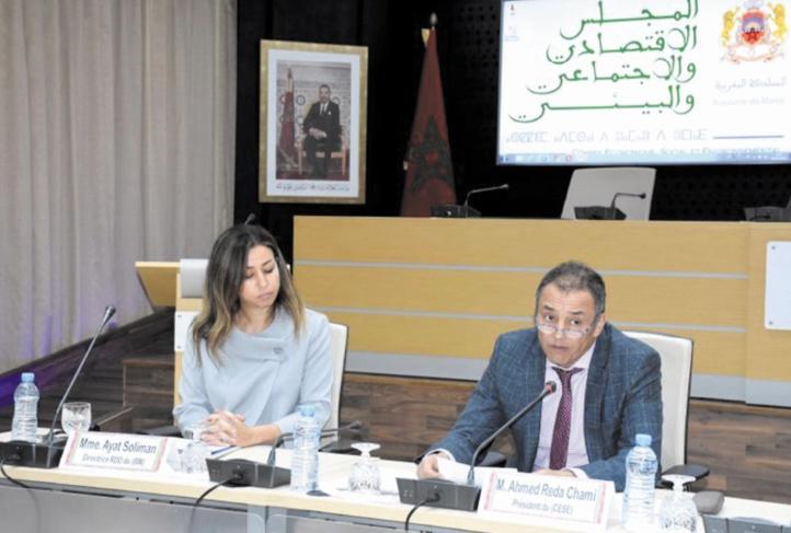 Le CESE appelle au renforcement des mécanismes participatifs