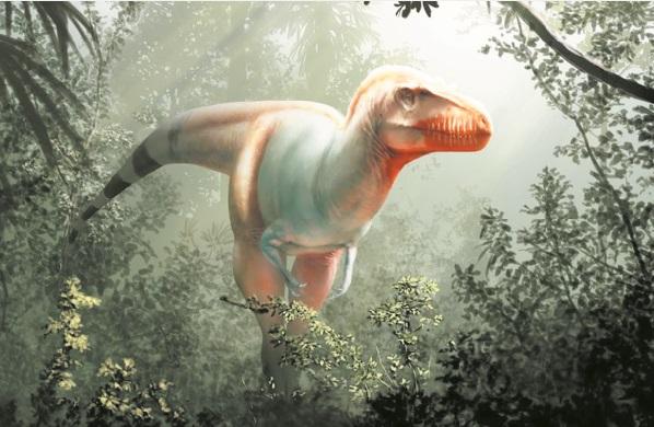 Un lointain cousin du T-Rex découvert au Canada