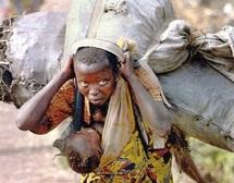 Perspectives économiques : 2012, année de la croissance économique de l'Afrique