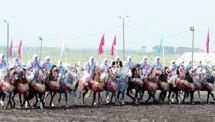 Semaine du cheval : Trophée Hassan II des arts équestres traditionnels