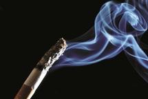 Avec une consommation qui dépasse les 15 milliards d'unités par an  : La cigarette, un fléau national