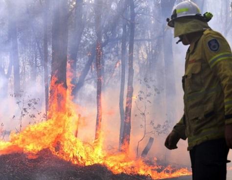 Le risque de feux de forêt augmente en Australie à cause des hommes