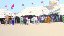 Courses camelines de Smara : Succès de l'édition inaugurale