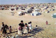 Son représentant en Suède vient de jeter l'éponge : Nouvelle défection  au sein du Polisario