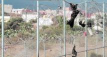 Affrontements près de Melillia : Un mort et plusieurs blessés parmi les forces de l'ordre