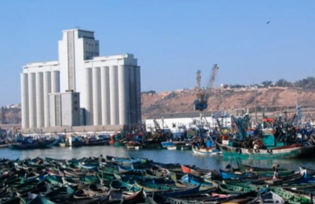 Reprise progressive des activités de pêche à Safi