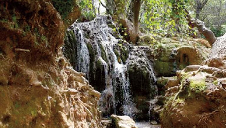 Le confinement redonne des couleurs à la nature à Ifrane