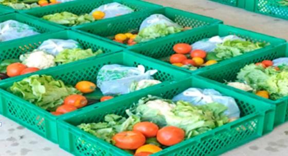 Des paniers de légumes livrés à domicile à Agadir