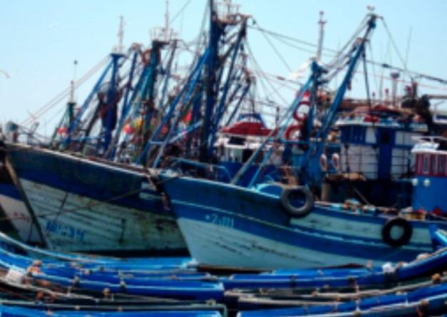 L'activité de la pêche maritime se poursuit et l'offre sera renforcée
