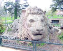 Sixième Festival international Tourtite d'Ifrane: La nature au carrefour des cultures